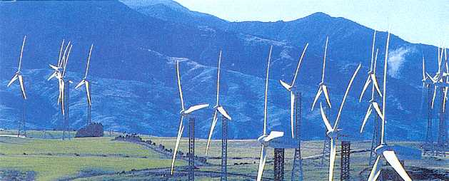a New Zealand ridge with some of 48 large windturbines at Trustpower's Tararua Windfarm. Towers NZ-made.
